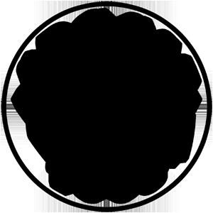 SDCCSF logo circle black transparent 300x300